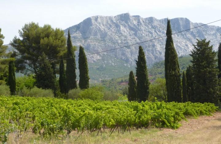 Pointgivning til vin – giver det overhovedet mening?