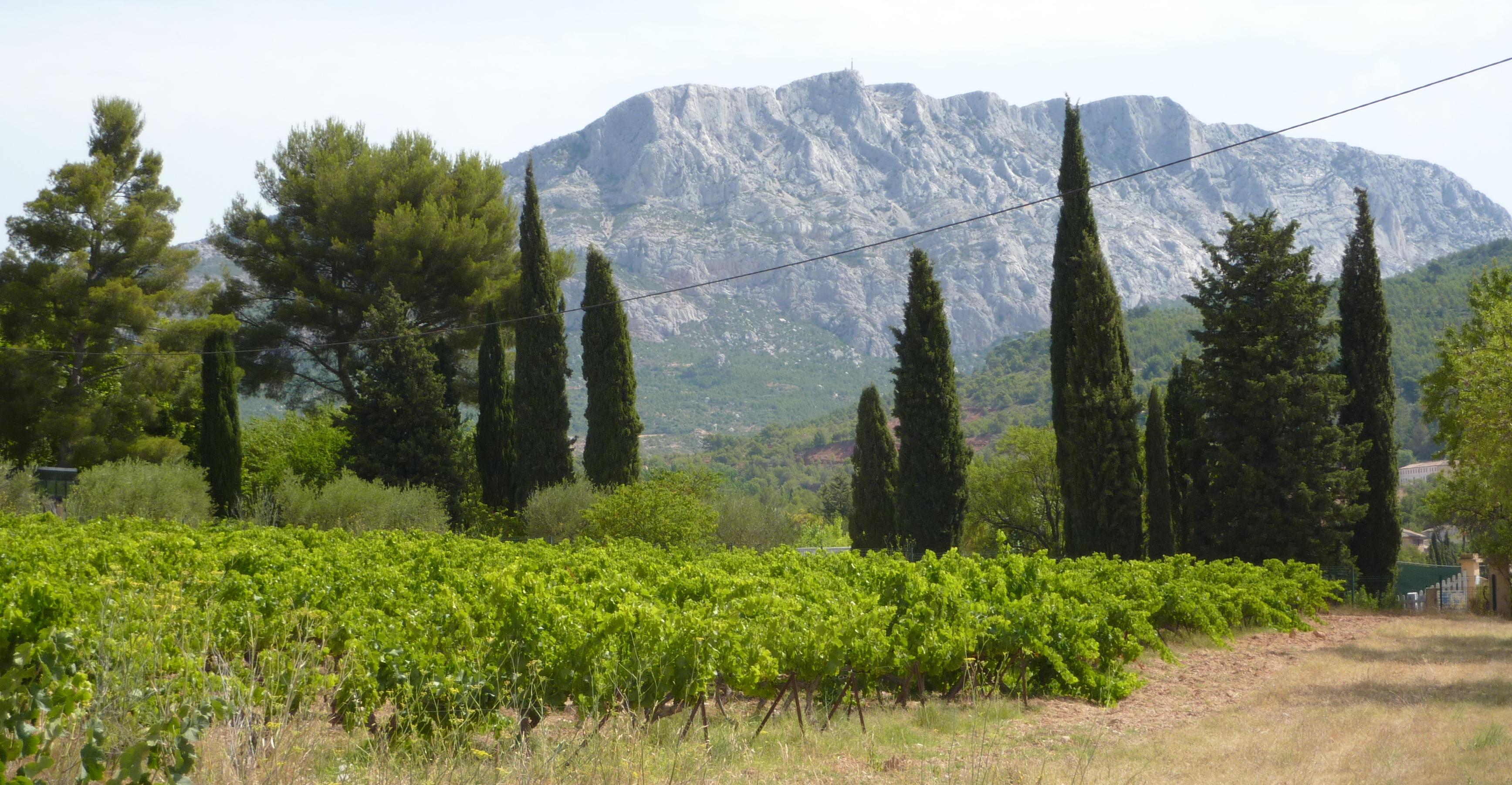 Mt St Victoire